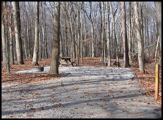 Picture Of Primitive Campsite Mccormick S Creek State