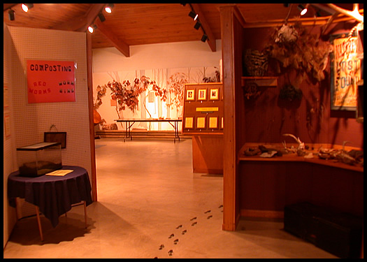 Nature Center exhibits and games