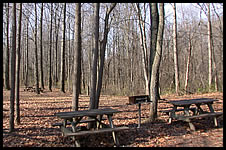 Picnic Area near playground and Deer Run Shelter